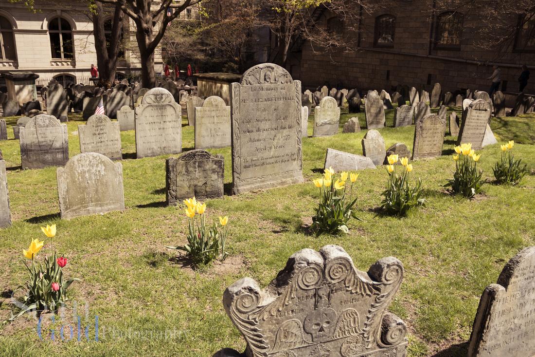 Boston Cemetery Historic History Sean Gold
